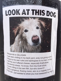 This hilarious lost dog poster I found a couple years ago