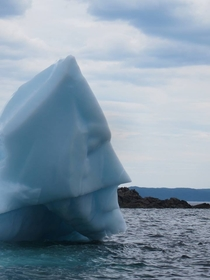 This icebergs parents melted so now it fights global warming