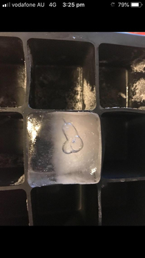 This IceCube has a penis bubble in it