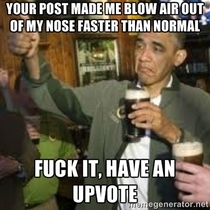 This is how I justify my upvotes on rfunny
