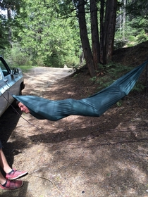 This is my friend using a hammock He called himself the green bean