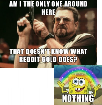 This is what Reddit gold is