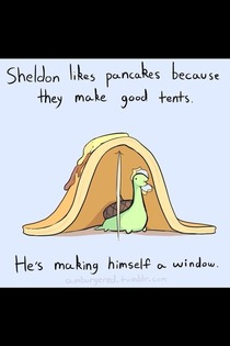 This is why Sheldon is a winner