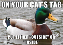 This makes it so much easier if we find your cat out and about and dont know if its escaped or not