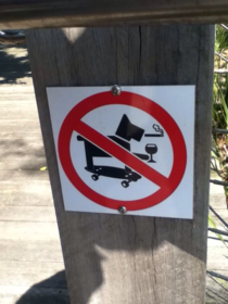 This must be the coolest dog ever not allowed here