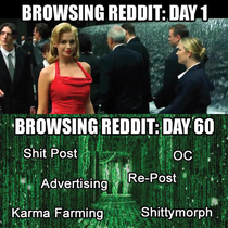 This pretty much sums up my experience with reddit so far