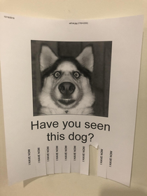 This was hanging on a wall at my office