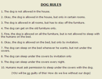 This was on the site I bought my jack russell from