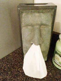 Tissue dispenser at my friends house