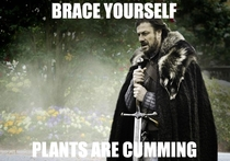 To all the seasonal allergy sufferers