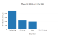 To anybody who says wind turbines are a major bird killer