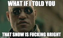 To the lady in the park that asked why I was wearing sun glasses in the middle of Winter