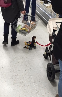 To the little boy who made his pet weasel a cart out of knex and dragged it round Waitrose on a lead