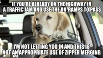 To the people that complained about the use of the advice mallard and zipper merging