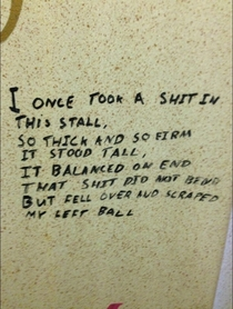 Toilet Poetry At Its Best