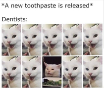 Toothpastes cant be a hit with all of them