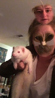 Tried to face swap this ferret didnt quite go as expected