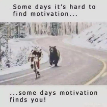 True motivation