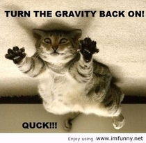 Turn the gravity back on Quick