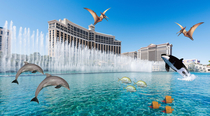 Unexpected side effect of Coronavirus The wildlife is returning to Las Vegas