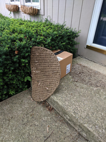 UPS man successfully hides parcel from stealing eyes when no one was home to receive it