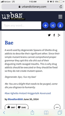 Urban dictionary feels strongly about the word bae