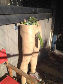 Very cool succulent planter