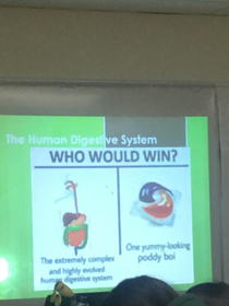 Very interesting biology lesson today