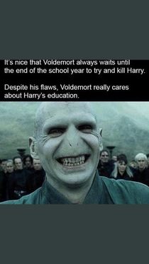 Voldemort really cares about Harrys Education