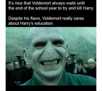 Voldemort was the real mvp