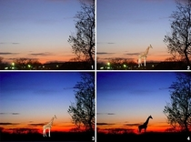 Want to Africanize any photo Just photoshop in a giraffe silhouette