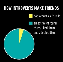 We all need an extrovert in our life