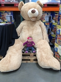 We found the Costco bear as well daughter thought it was the coolest thing she wouldnt stop smiling or looking at it