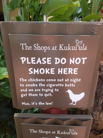 We have to help the chickens quit