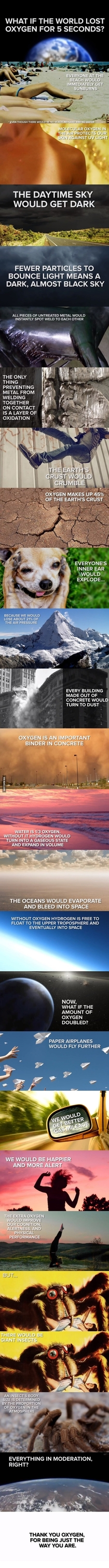What if the world lost oxygen for  seconds