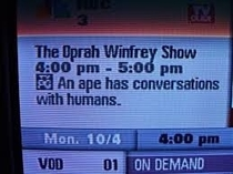 whatd you just say about oprah