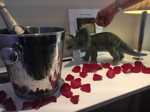 When I booked my hotel a few months ago I put in a few special requests as a joke Champagne roses and a plastic dinosaur Then I totally forgot that Id made that request Absolutely lost my shit when I checked into my room today
