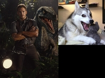 When I saw the new promotional photo for JURASSIC WORLD the raptor in the background reminded me of this meme