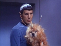 When Star Trek made an exotic animal by putting a cone on a dog