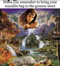 When you come to the grocery store with your own reusable bags