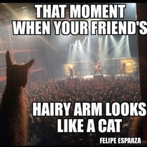When your friends hairy arm looks like a cat