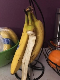 When your  yr old cant quite figure out how to remove the banana from the bunch but will not be denied