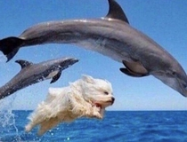 When youre drunk af and start making friends with everyone