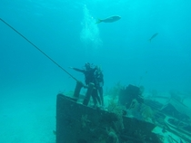 While diving in the Bahamas my friends and I found a sunken ship and decided to reenact our favorite movie scene