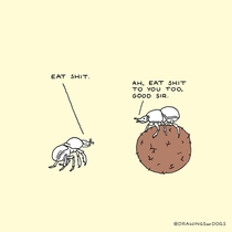 Wholesome Beetles