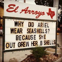 Why did Ariel wear seashells