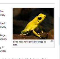 Wikipedia stoically acknowledges the cuteness of frogs