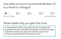 Windows  Comes standard with disappointment