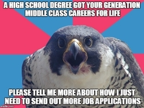 With a degree in Bird Law