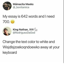 Word limit essays